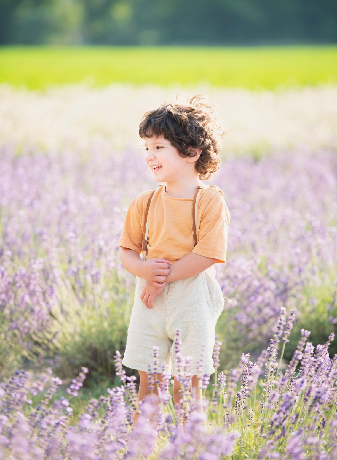 Pictonat_Lavender_0727_0168_WEB
