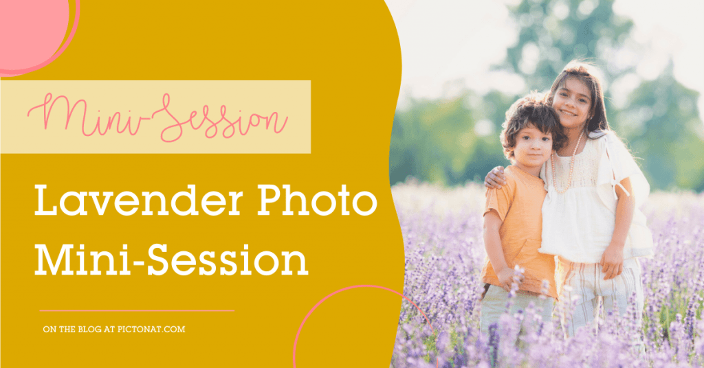 Lavender Mini-Session Pictonat Photography