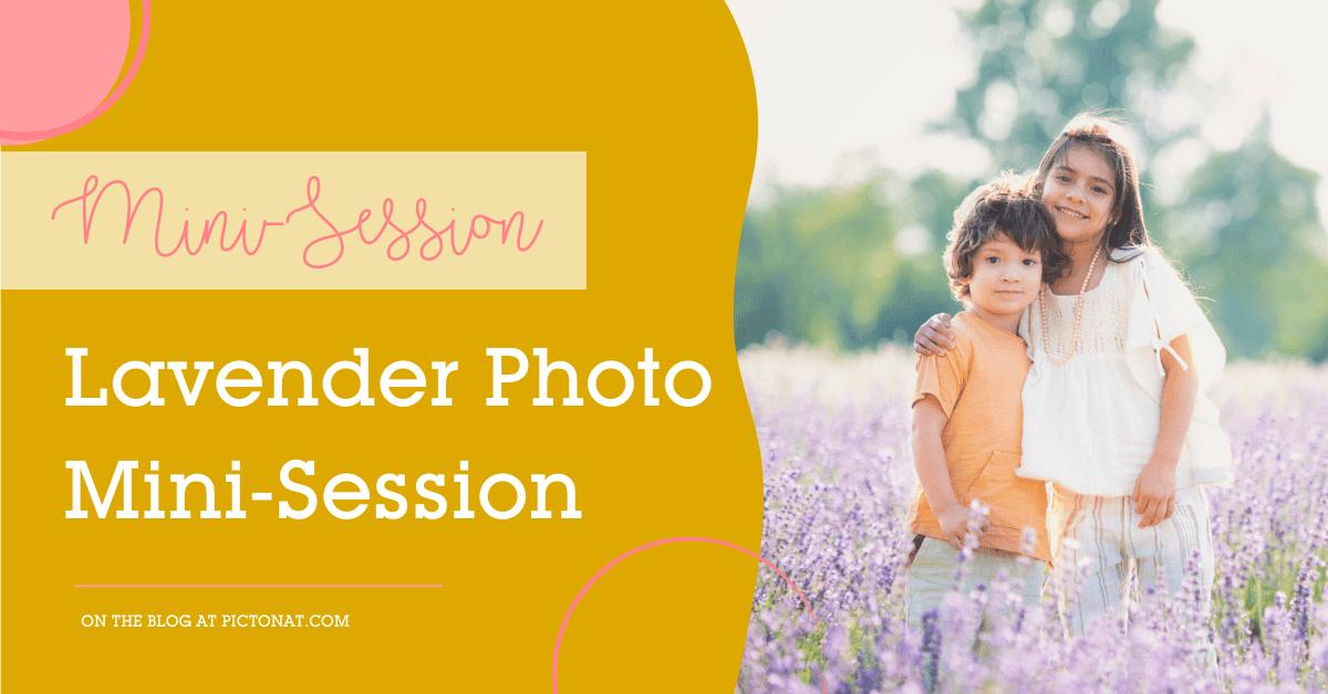 Lavender Mini-Session Pictonat Photography